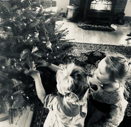 Christmas tree and twins