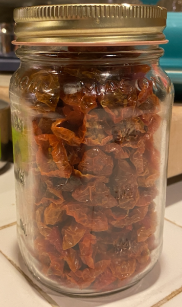 Um. Dehydrated sungold tomatoes. The tomato infatuation continues.